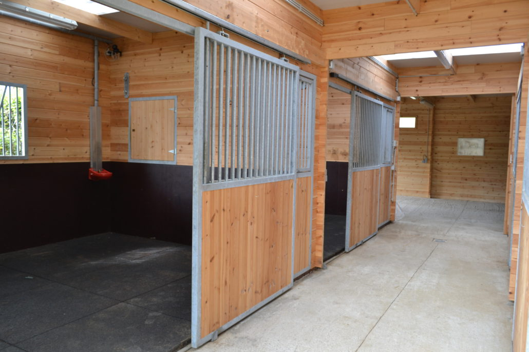 Veulenzorg paardenstallen binnen